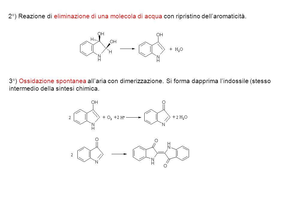 2°) Reazione di eliminazione di una molecola di acqua con ripristino dell'aromaticità.