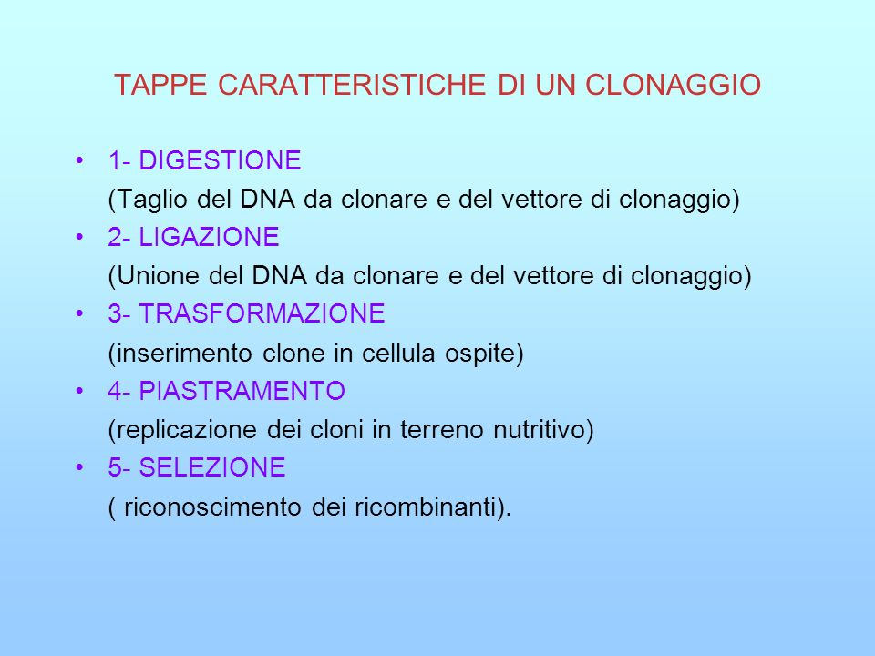 TAPPE CARATTERISTICHE DI UN CLONAGGIO