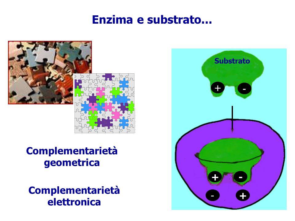 Complementarietà geometrica Complementarietà elettronica