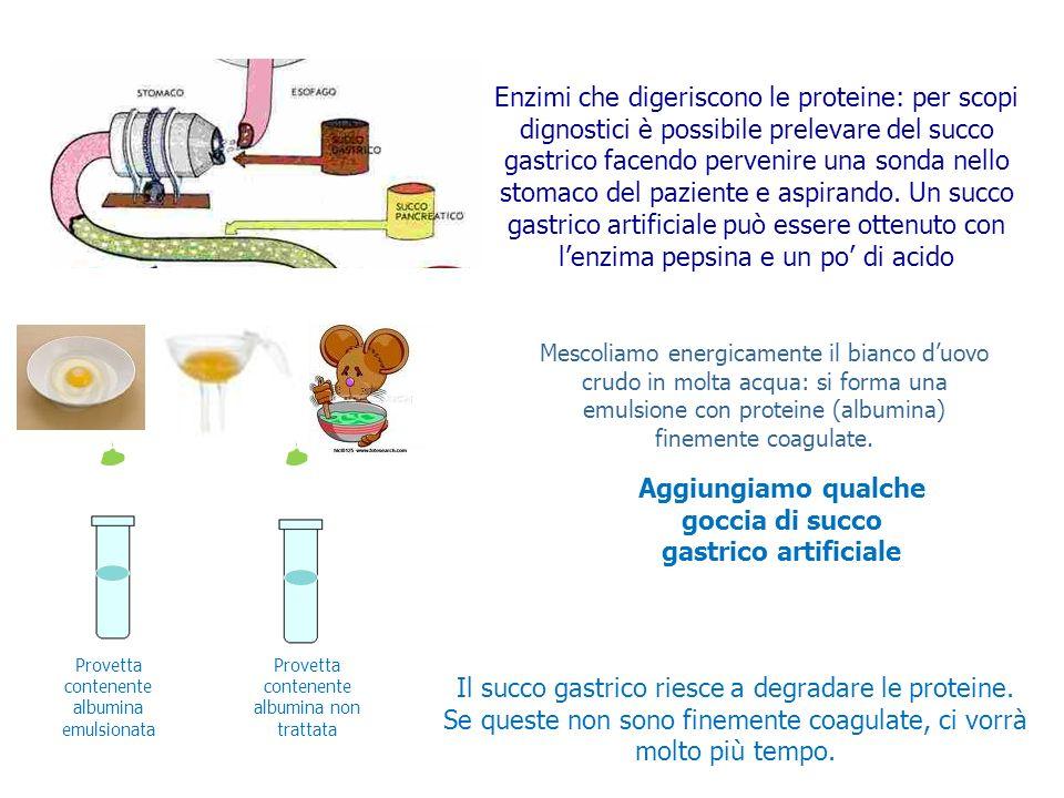 Aggiungiamo qualche goccia di succo gastrico artificiale