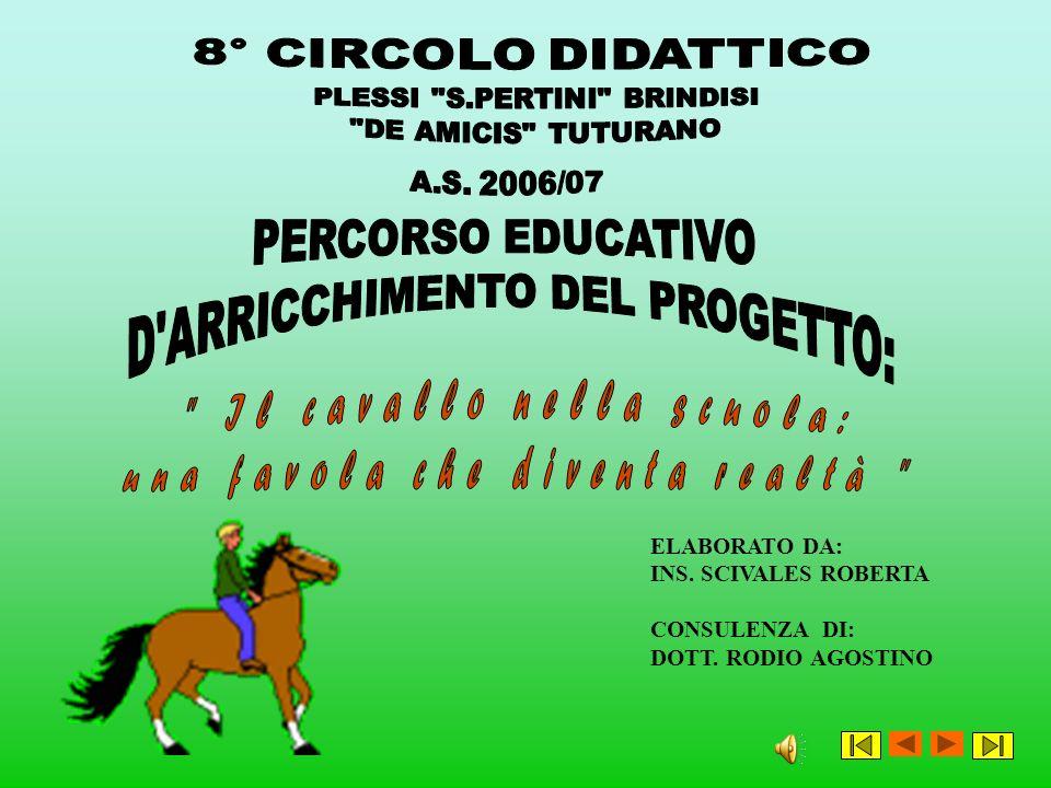 D ARRICCHIMENTO DEL PROGETTO: