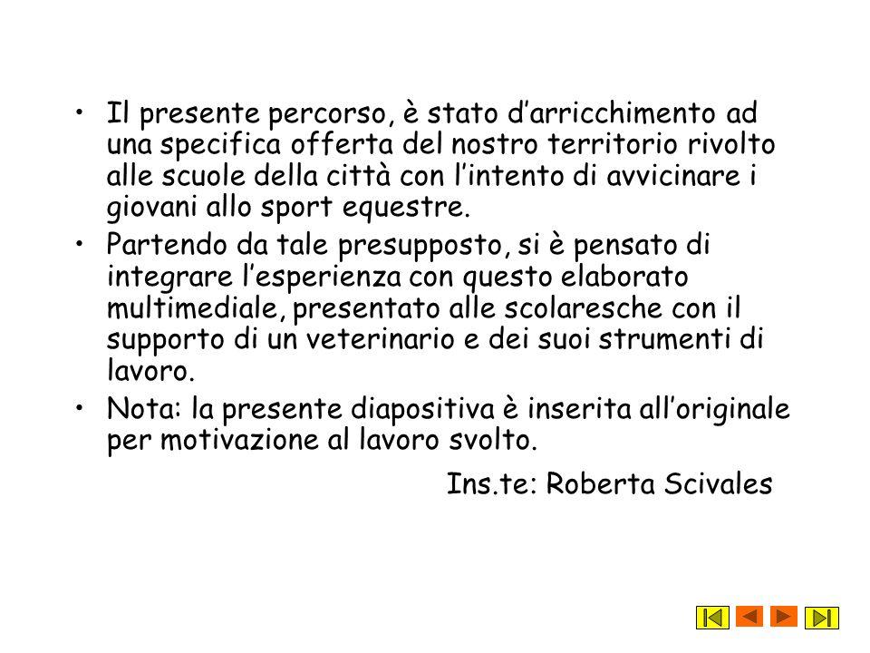 Ins.te: Roberta Scivales