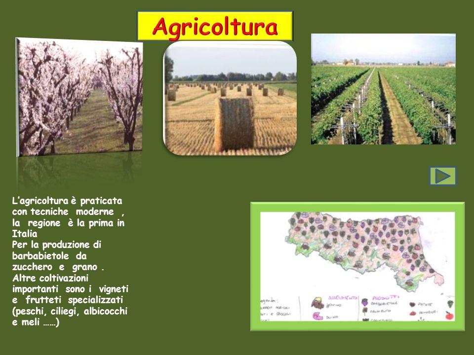 Agricoltura L'agricoltura è praticata con tecniche moderne , la regione è la prima in Italia.