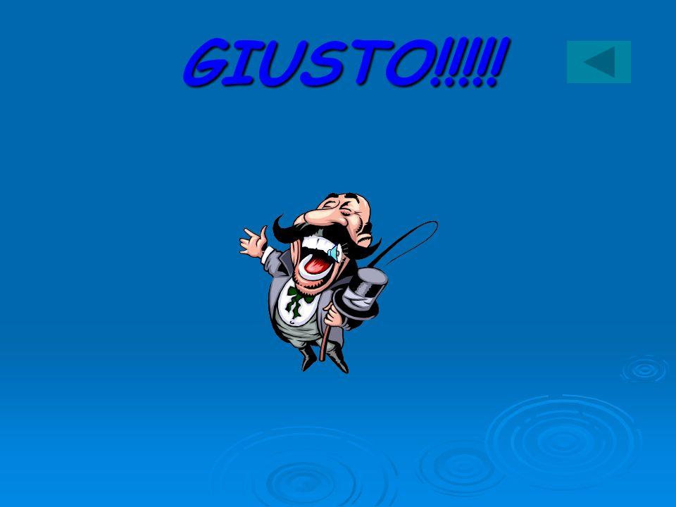 GIUSTO!!!!!