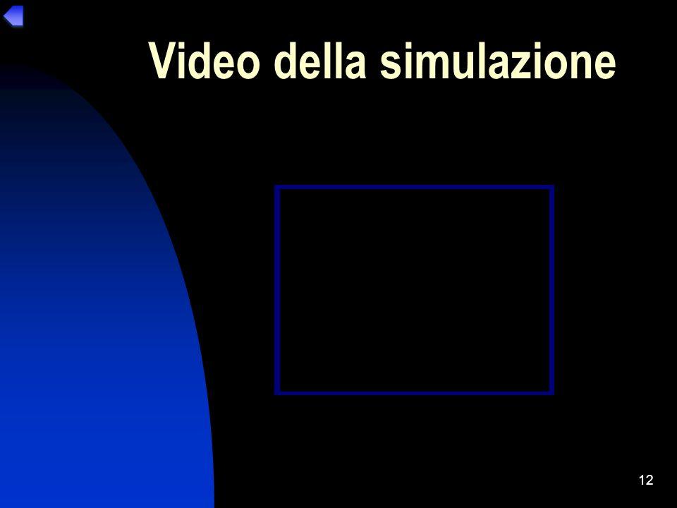 Video della simulazione