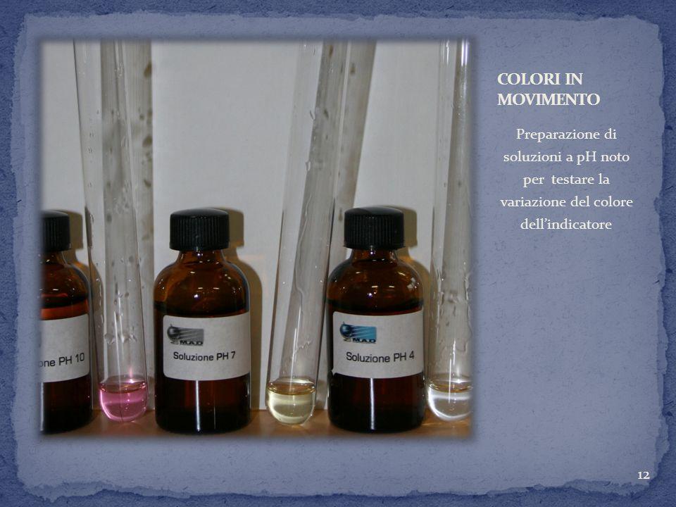 COLORI IN MOVIMENTOPreparazione di soluzioni a pH noto per testare la variazione del colore dell'indicatore.
