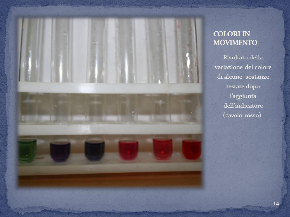 COLORI IN MOVIMENTORisultato della variazione del colore di alcune sostanze testate dopo l'aggiunta dell'indicatore (cavolo rosso).