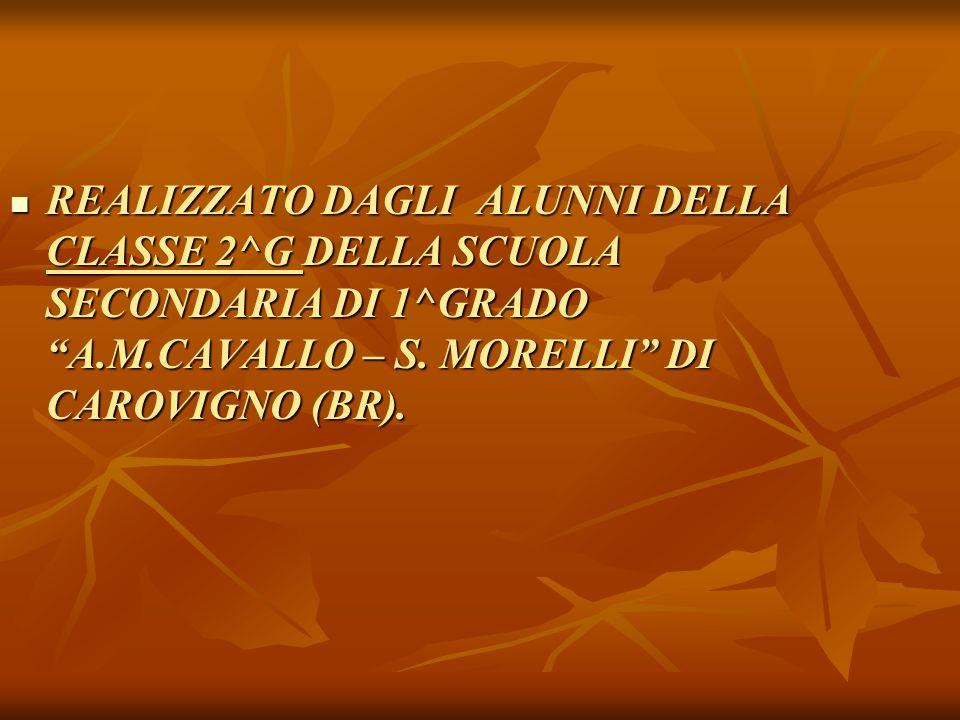 REALIZZATO DAGLI ALUNNI DELLA CLASSE 2^G DELLA SCUOLA SECONDARIA DI 1^GRADO A.M.CAVALLO – S.