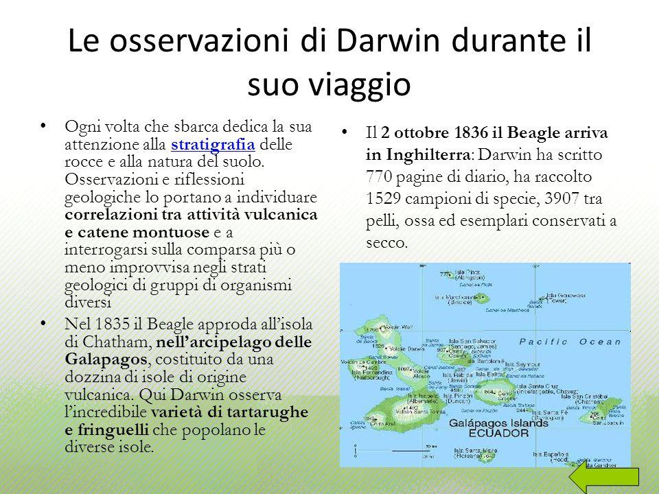 Le osservazioni di Darwin durante il suo viaggio