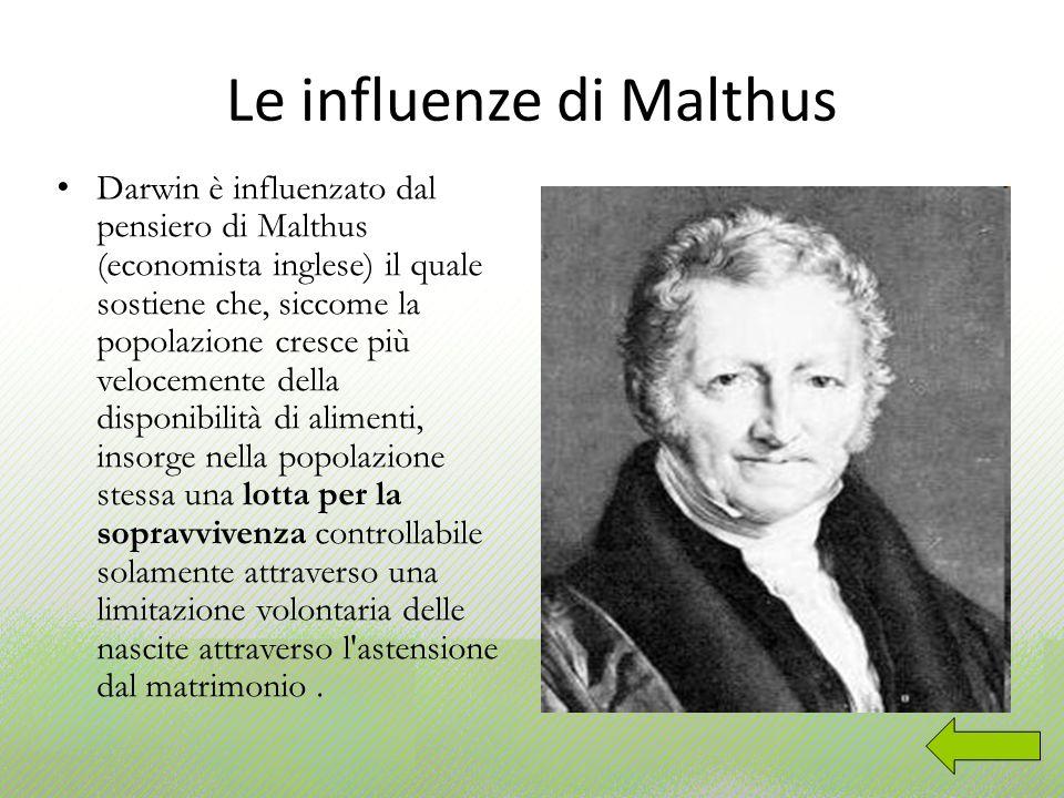 Le influenze di Malthus