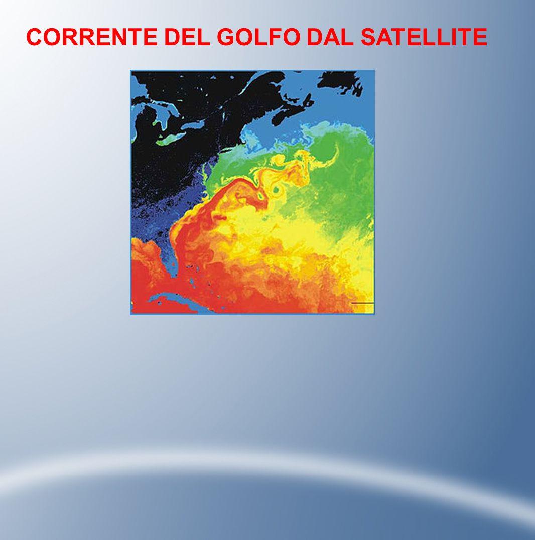 CORRENTE DEL GOLFO DAL SATELLITE