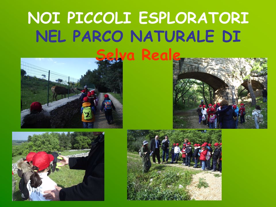 NOI PICCOLI ESPLORATORI NEL PARCO NATURALE DI Selva Reale