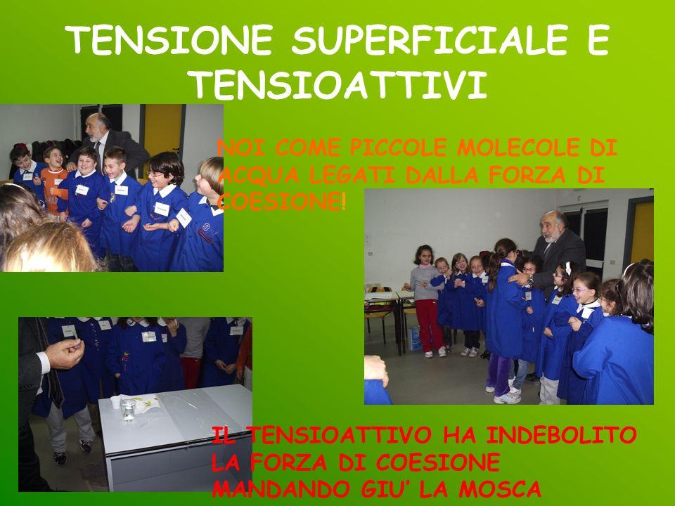 TENSIONE SUPERFICIALE E TENSIOATTIVI