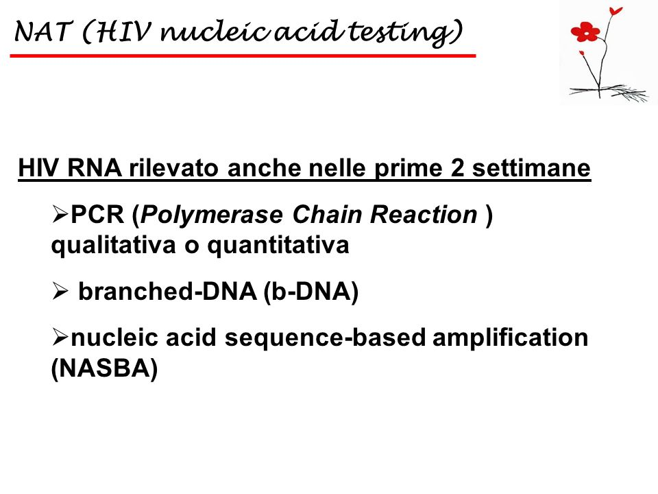 NAT (HIV nucleic acid testing)