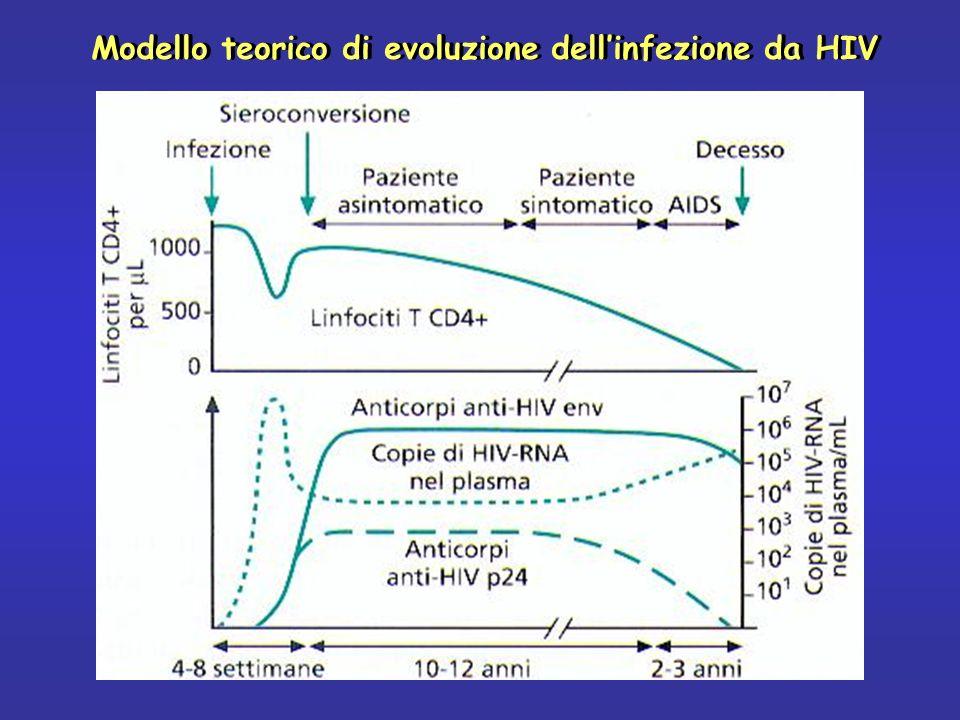 Modello teorico di evoluzione dell'infezione da HIV
