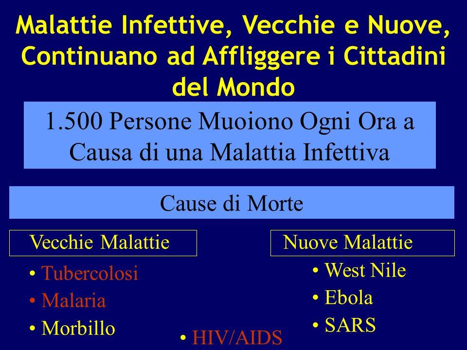 1.500 Persone Muoiono Ogni Ora a Causa di una Malattia Infettiva