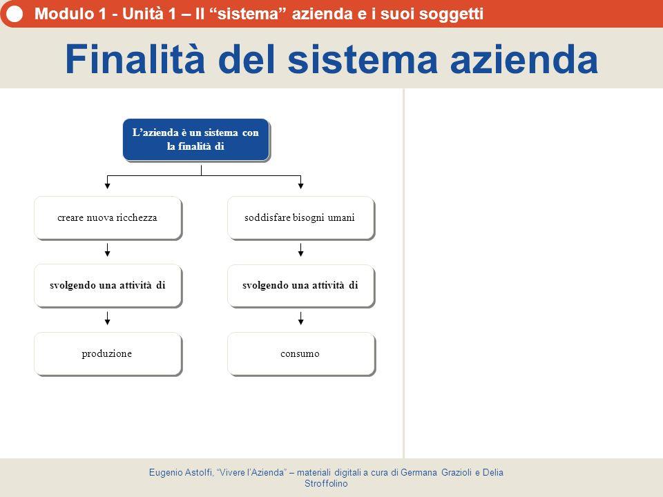 Finalità del sistema azienda