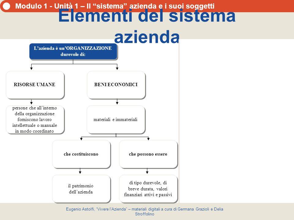 Elementi del sistema azienda