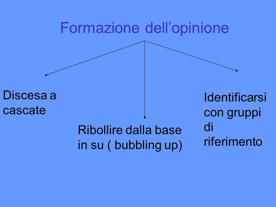Formazione dell'opinione