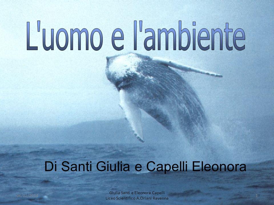 Di Santi Giulia e Capelli Eleonora