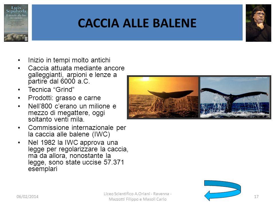 Liceo Scientifico A.Oriani - Ravenna - Mazzotti Filippo e Masoli Carlo