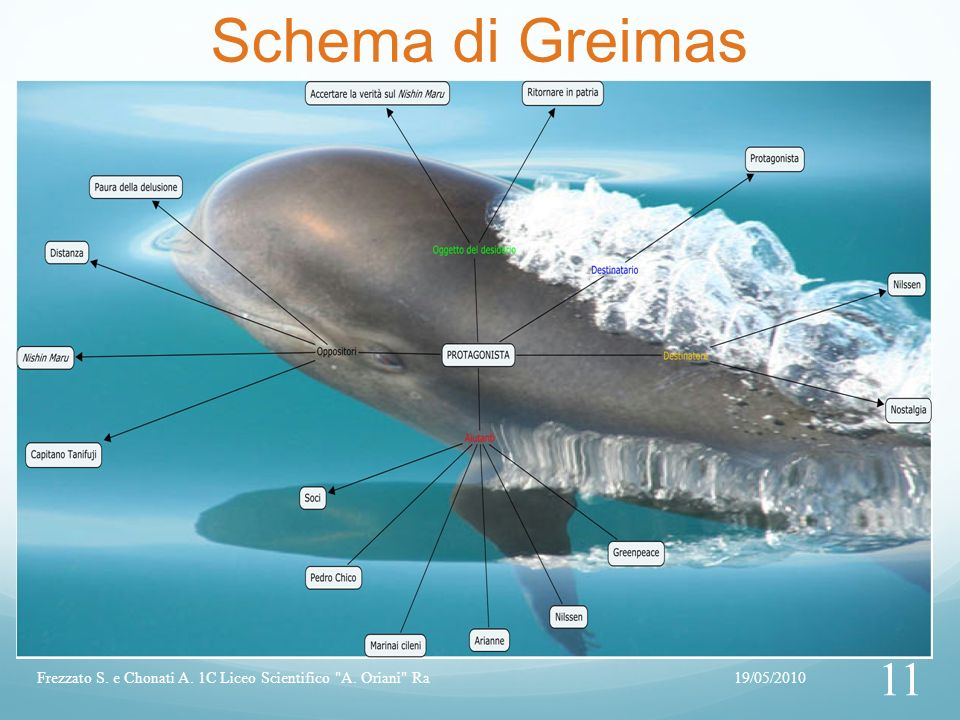 Schema di Greimas Frezzato S. e Chonati A. 1C Liceo Scientifico A. Oriani Ra 19/05/2010