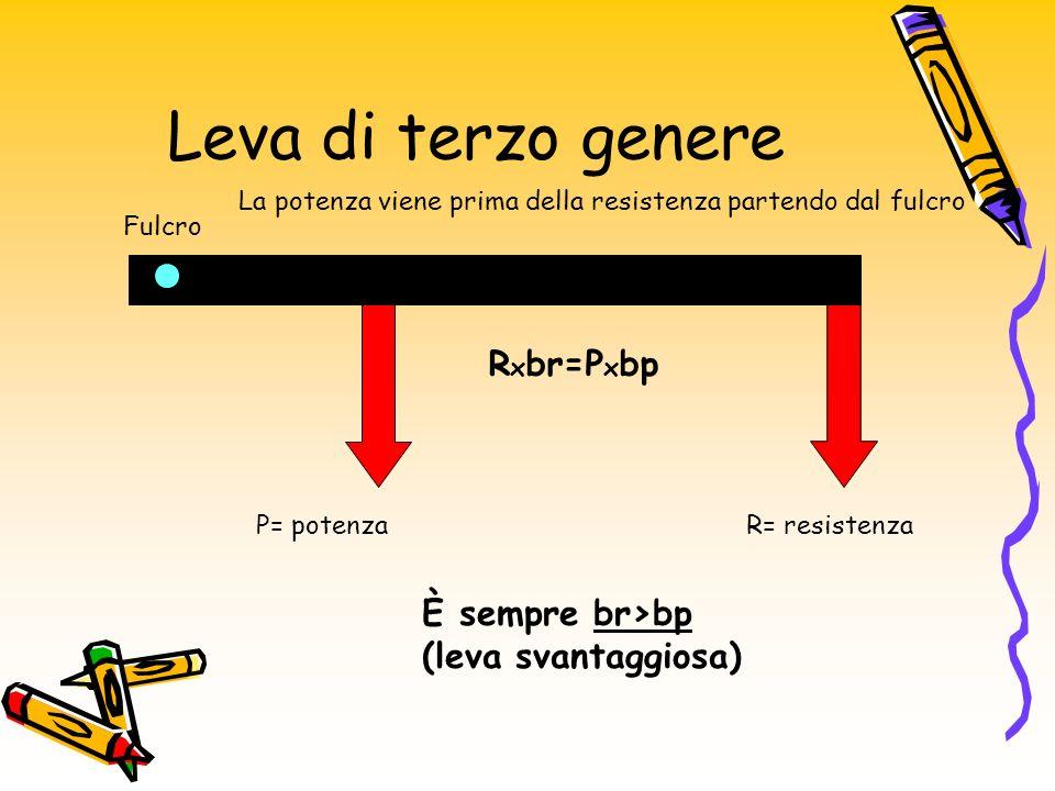 Leva di terzo genere Rxbr=Pxbp È sempre br>bp (leva svantaggiosa)