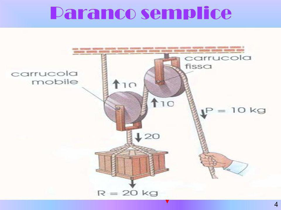 Paranco semplice Fm Fm Fm = forza motrice Fr = forza resistente 4