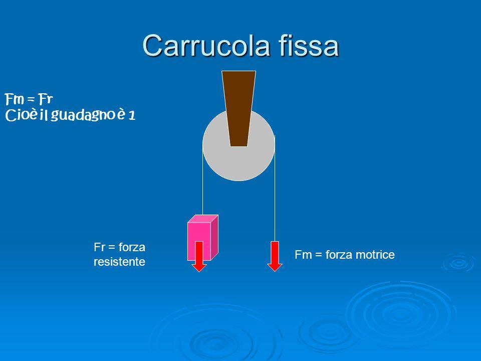 Carrucola fissa Fm = Fr Cioè il guadagno è 1 Fr = forza resistente