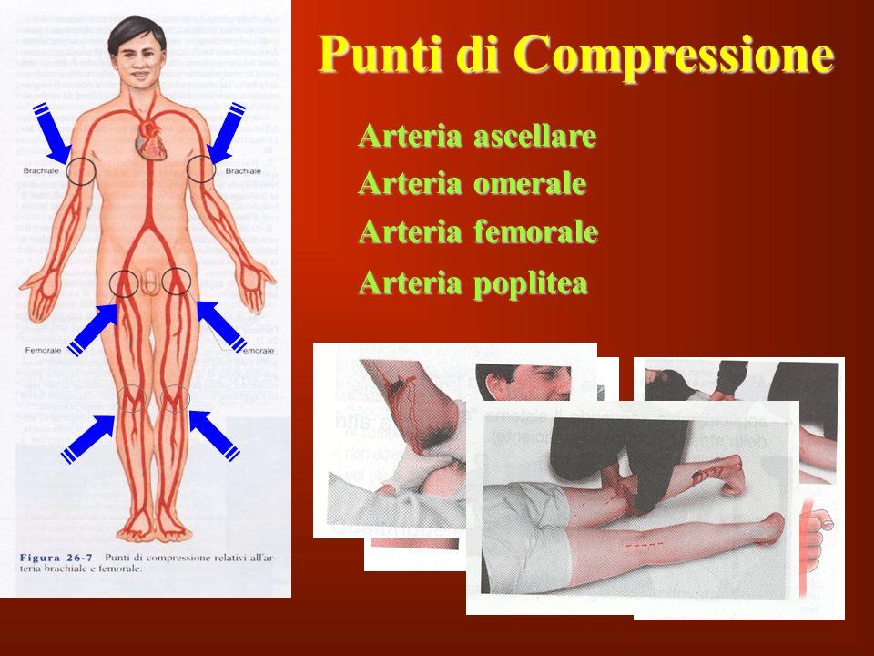 Punti di Compressione Arteria ascellare Arteria omerale
