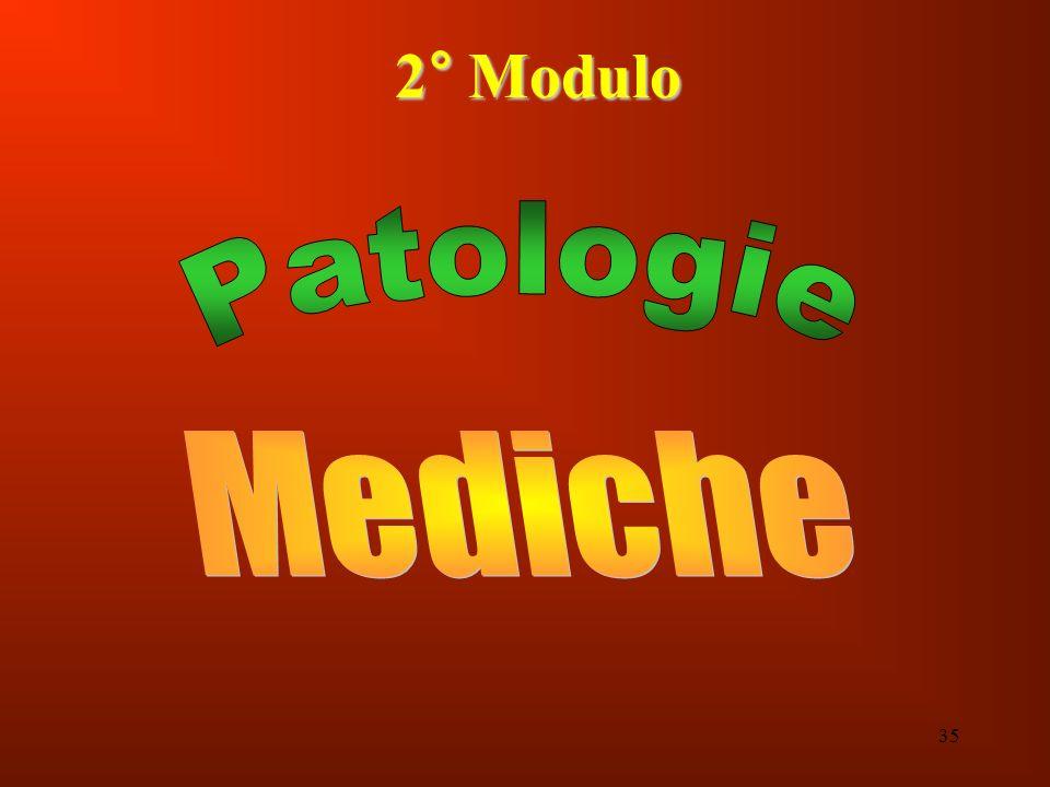 2° Modulo Patologie Mediche 35