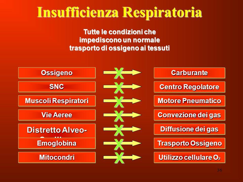 Insufficienza Respiratoria Distretto Alveo- Capillare