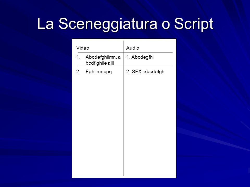 La Sceneggiatura o Script