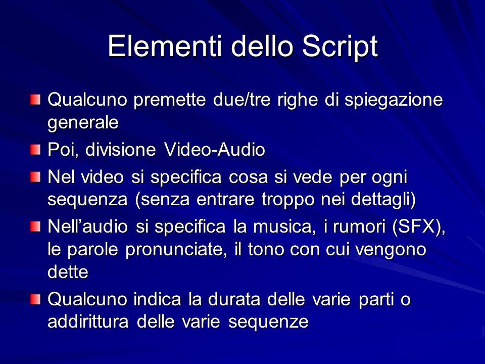 Elementi dello Script Qualcuno premette due/tre righe di spiegazione generale. Poi, divisione Video-Audio.