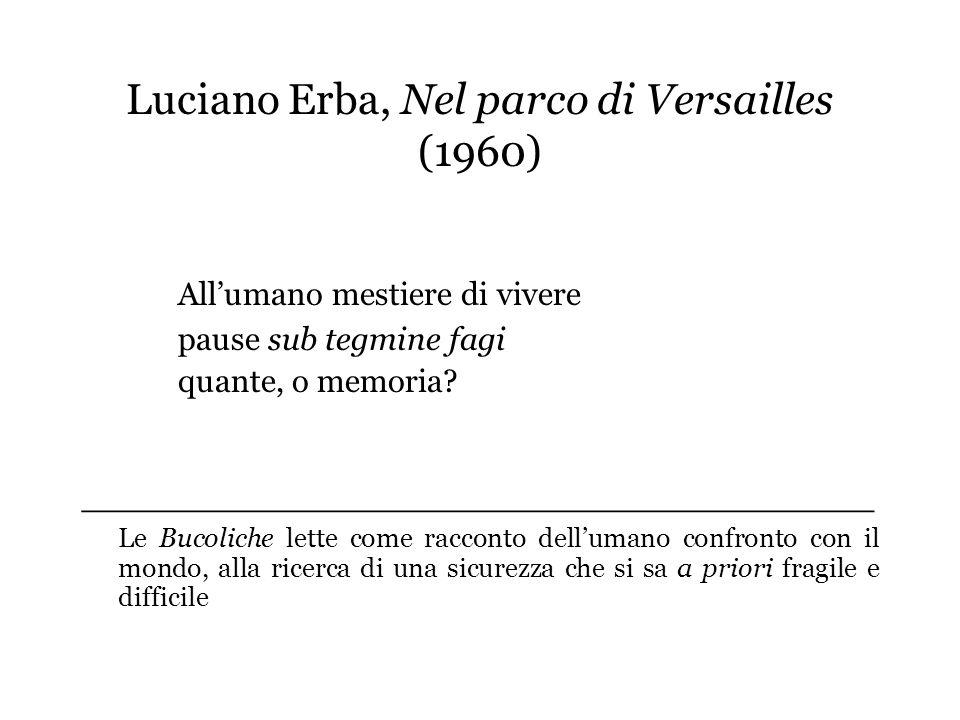 Luciano Erba, Nel parco di Versailles (1960)