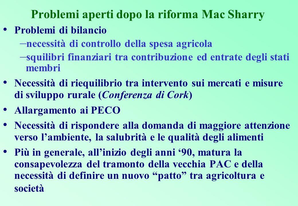 Problemi aperti dopo la riforma Mac Sharry