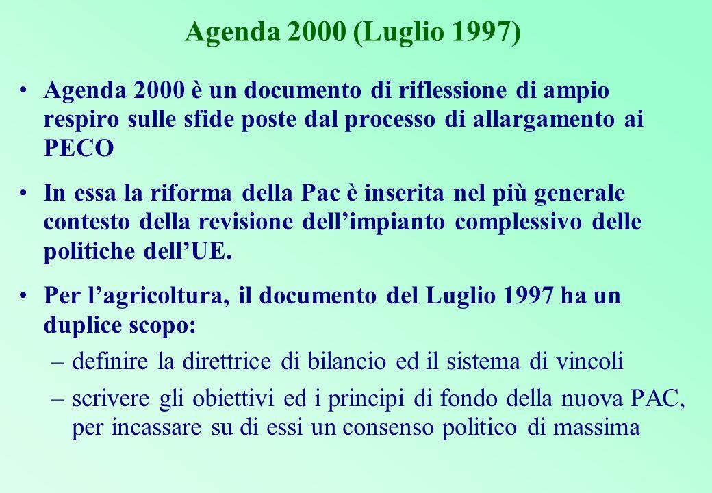Agenda 2000 (Luglio 1997) Agenda 2000 è un documento di riflessione di ampio respiro sulle sfide poste dal processo di allargamento ai PECO.