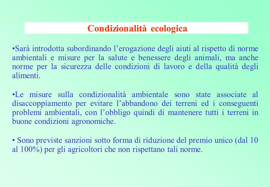 Condizionalità ecologica