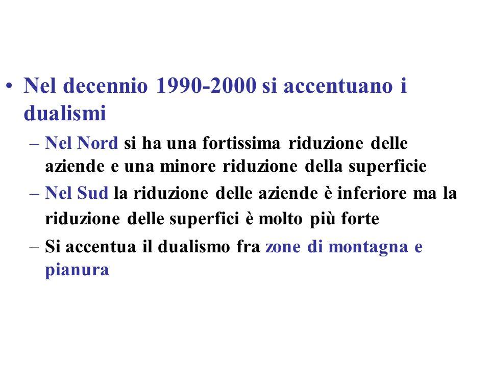 Nel decennio 1990-2000 si accentuano i dualismi