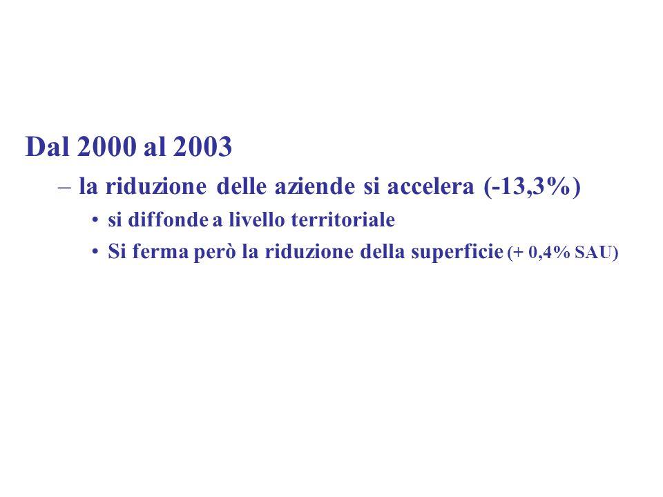Dal 2000 al 2003 la riduzione delle aziende si accelera (-13,3%)