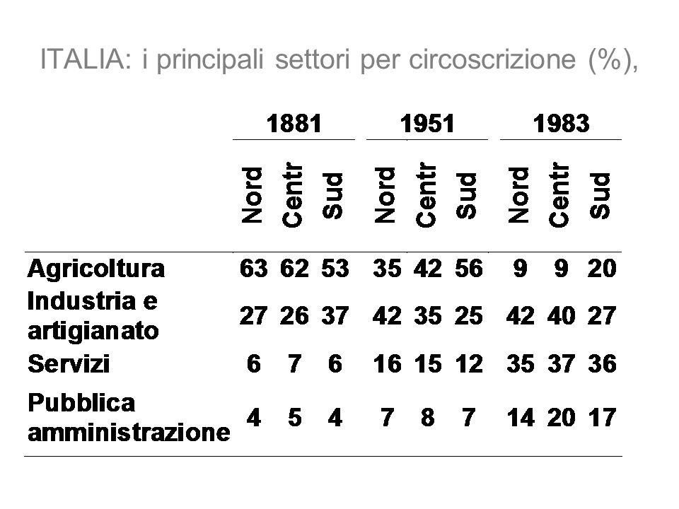 ITALIA: i principali settori per circoscrizione (%),