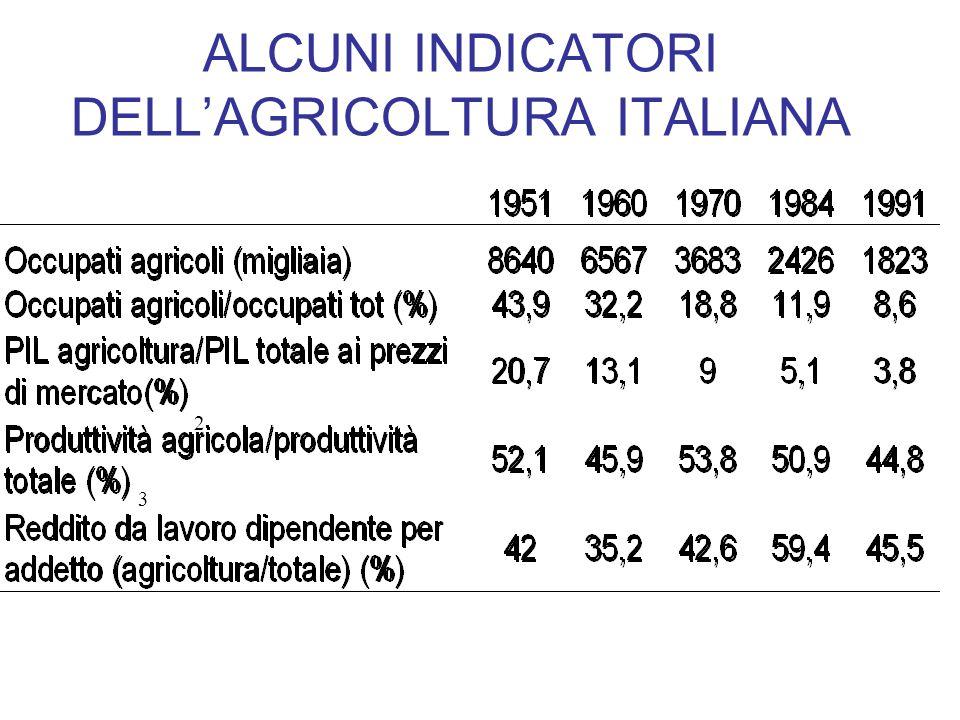 ALCUNI INDICATORI DELL'AGRICOLTURA ITALIANA