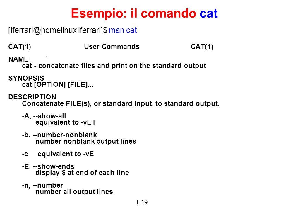Esempio: il comando cat