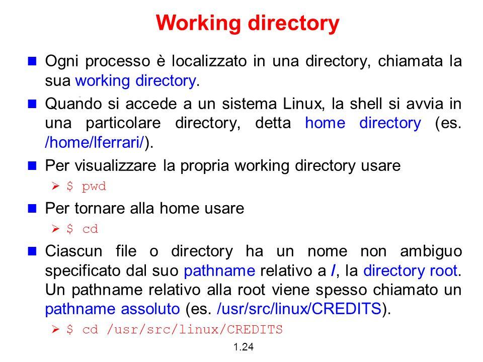 Working directory Ogni processo è localizzato in una directory, chiamata la sua working directory.