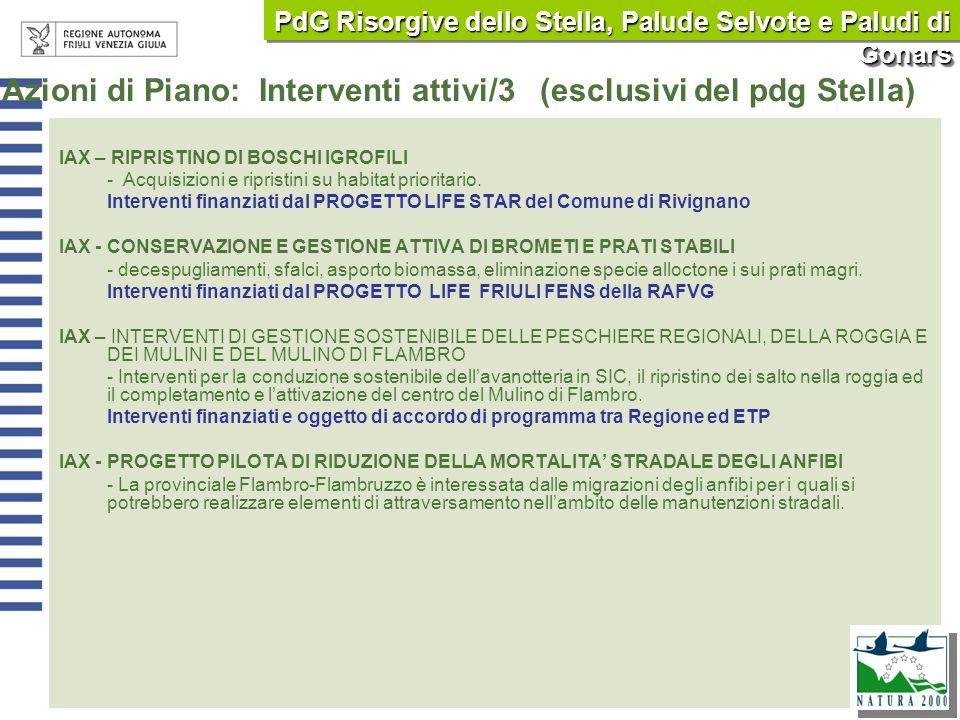 Azioni di Piano: Interventi attivi/3 (esclusivi del pdg Stella)