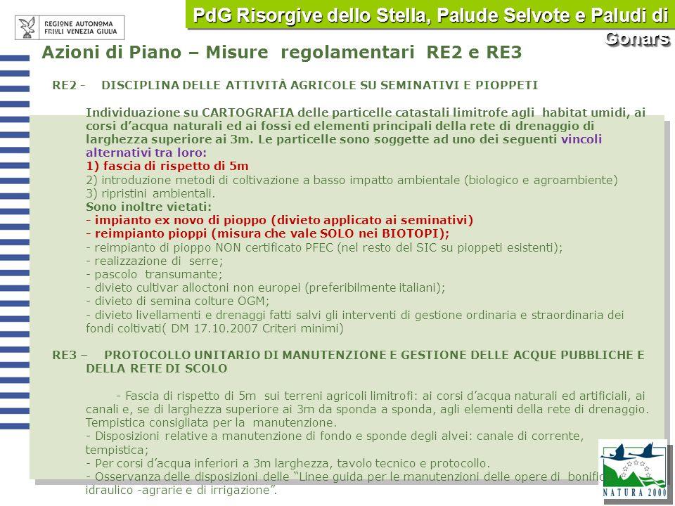 PdG Risorgive dello Stella, Palude Selvote e Paludi di Gonars
