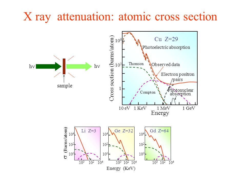 X ray attenuation: atomic cross section