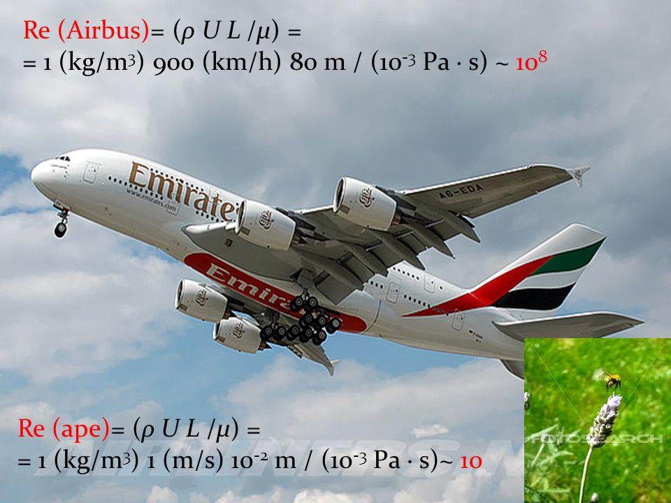 Re (Airbus)= (ρ U L /μ) = = 1 (kg/m3) 900 (km/h) 80 m / (10-3 Pa · s) ~ 108. Re (ape)= (ρ U L /μ) =