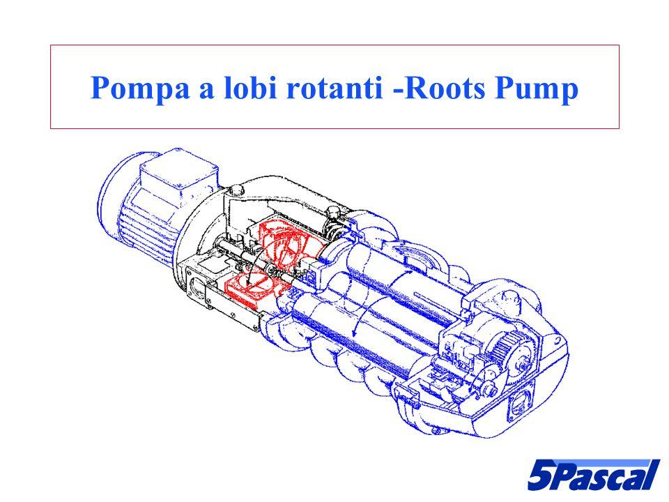 Pompa a lobi rotanti -Roots Pump