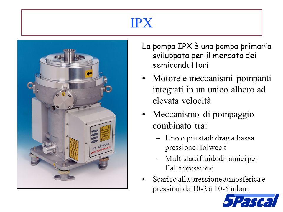 IPX La pompa IPX è una pompa primaria sviluppata per il mercato dei semiconduttori.